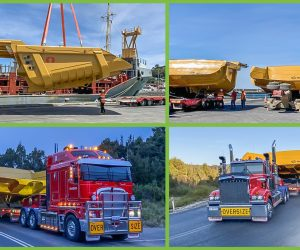 A GREAT WAY TO END 2019! FLS AUSTRALIA ENDED 2019 WITH A SHIPMENT OF 5 DUMP TRAYS FROM INDONESIA TO TASMANIA.